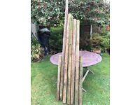Timber Landscaping poles edging