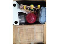 Hamster cage and equipment