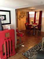 1 Bedroom Furnished & Fully Equipped Basement Suite