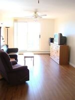Condo Apartment For Rent