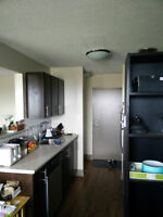 1 bedroom sublet, newly renovated with parking and dishwasher