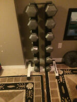 northern lights dumbell rack only