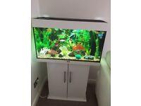 Jewel Aquarium Rio 125L