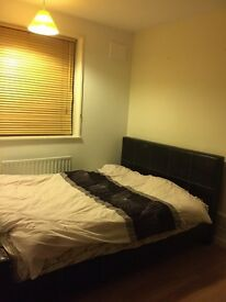 single room to rent in Burnt Oak