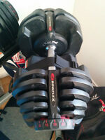 BowFlex 1090 dumbbells and stand.