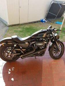 Harley Davidson 2012 Iron 883 Nailsworth Prospect Area Preview