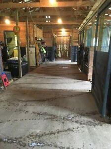 Horse Boarding, 5 min fr Windsor, near Martock Ski Hill