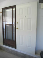 Steel Entry door and Trilight glass storm door