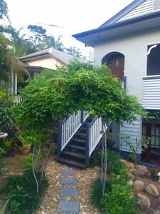 Wanting a flatmate Hawthorne Brisbane South East Preview