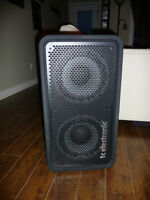 Bass Cab Tc Electronic RS210!!