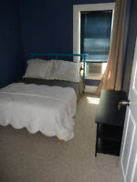 Immaculate Furnished Room in South End