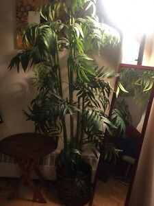 Beautiful 6ft tall Artificial Plant