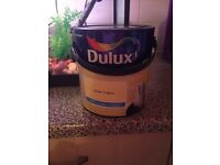 Dulux lemon tropics paint