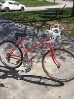 Ladies Road/Speed Bike
