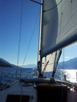 Sailing Charters / Learn to sail/ Skill Development