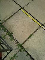 """concrete pavers - 24"""" x 24"""""""