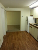 One, 1 bedroom apartment for rent in Enderby