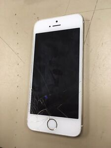 Gold iPhone 5s, (rogers) Strathcona County Edmonton Area image 1