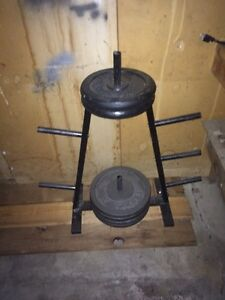 300 lbs of Weights
