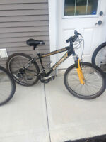Two bike Schwinn package deal