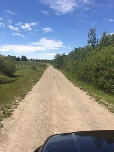 Affordable Horse Boarding-West of Calgary /Springbank Area