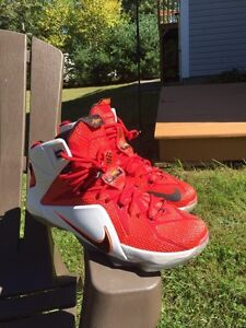 LEBRON 11 HEART OF A LION SIZE 12 US