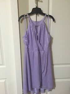 Never worn cute purple and silver dress
