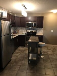 Fully Furnished 2 Bed Condo in Lakeridge for rent with Garage Regina Regina Area image 2