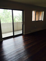 1 bedroom apartment available June 15. Beautiful finishes