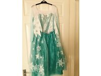 Frozen Elsa dress and shoes