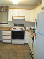 2 or 3 bdrm furnished