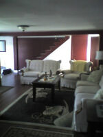 2 Bd home for rent Placentia/Long Hbr