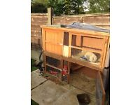 Rabbits and hutch must go soon