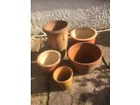 Garden plant pots job lot