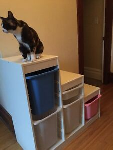 IKEA kids storage - $75
