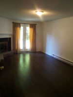 Lovely walkout basement apt with Separate entrance near Brock Rd