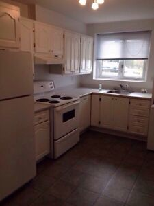 2 bedroom basement apartment available