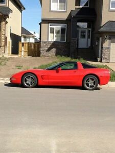 CORVETTE IN IMMACULATE CONDITION