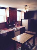 One bedroom basement suite near U of S/RUH
