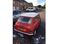 1985 classic mini for sale