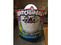 Brand new hatchimal for sale