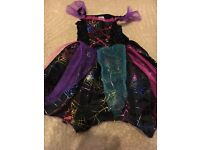 Girls Halloween Costume size 3-4 years - Used Once