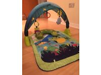 Baby play mat/ play gym