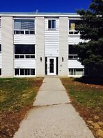 Arnprior, large bright 2 bedroom apartment