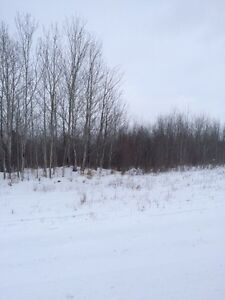 Two 5 ac Lots Near Forest