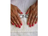 Nail Technician/Massage Therapist