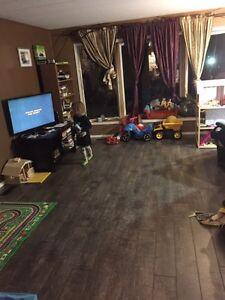 Laminate flooring brand new