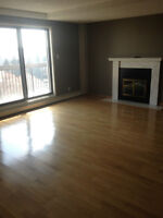 LUXURY CONDO IN DOWNTOWN!! INDOOR POOL & HOT TUB