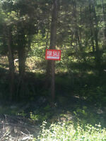 1/2 acre lot Fintry BC