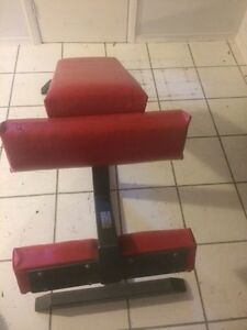 Weight Bench 100 lbs weight/ Ab Bench London Ontario image 2